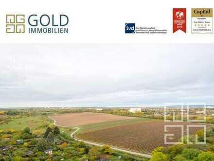 GOLD IMMOBILIEN: 2 Wohnungen als eine Einheit (flexible Nutzungsmöglichkeiten)
