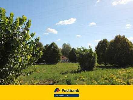 Private Vermarktung: Neubau-Doppelhaushälfte mit großem Garten in der Stadtrandsiedlung Malchow