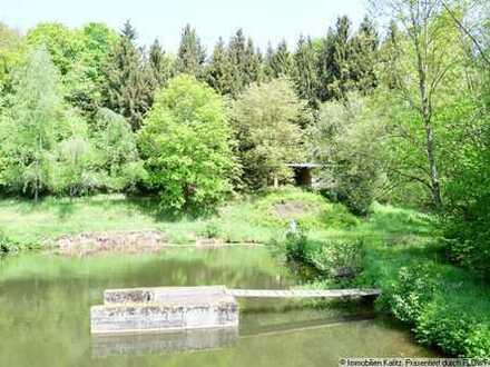Idylle Pur - Fischweiher mit Fischbesatz und Fischereihütte sowie Weinberghäuschen
