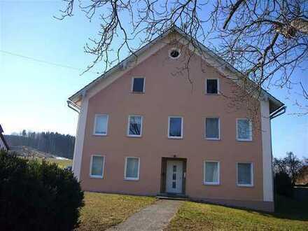 Ein sehr grosses Wohnhaus bietet Nutzungsmöglichkeiten: 2 Wohnungen? Generationen? Wohnen+Gewerbe?