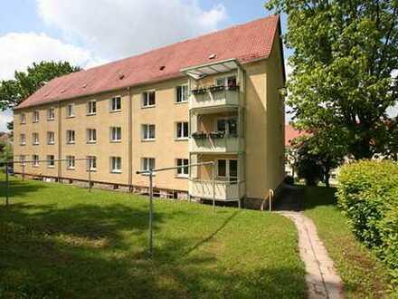 +++Neue 2-Raum-Wohnung mit Abstellraum+++