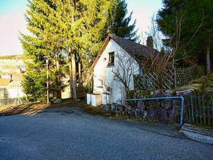 Minihaus in Titisee-Neustadt - Ferienhaus