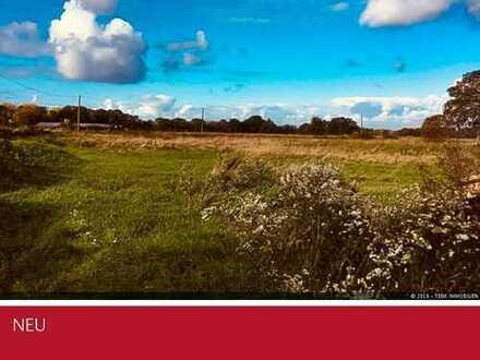 Südlohn-Oeding - Großzügige Doppelhaushälfte in saniertem Kotten in herrlicher Naturlage