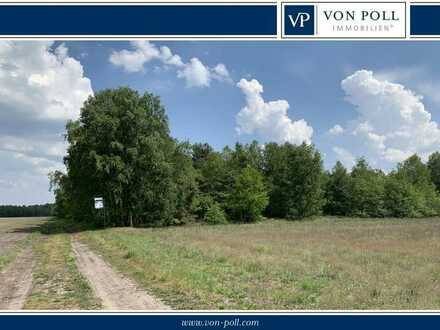 Waldgrundstück in Nordhorn/Klausheide