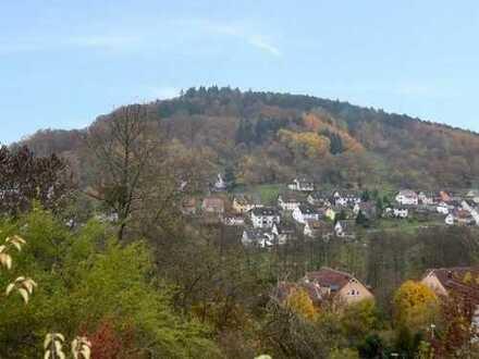 Vielseitig nutzbares Grundstück mit wunderschönem Ausblick in ruhiger Lage von Lohr