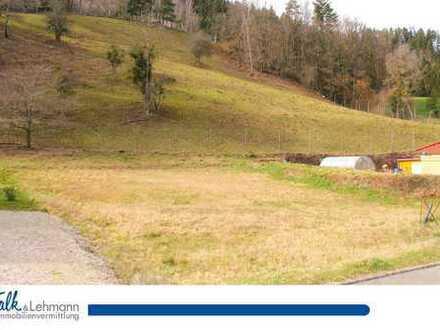 +++ einmalige Chance: sonniges, erschlossenes Grundstück in Gutach ohne Bauzwang+++