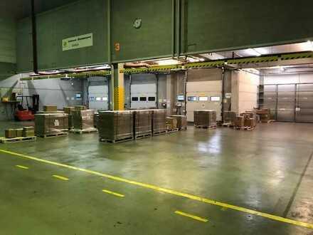 Lager-/und Produktionsflächen an der A45 FÜR SIE PROVISIONSFREI!