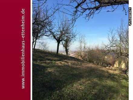 Obstbaumwiese und Gartengrundstück in Aussichtslage von Ettenheim
