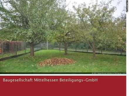 Schönes Baugrundstück mit Altbestand in Frankenberg-Kliniksnähe