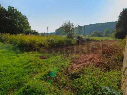Unverbaubarer Weitblick: Vollerschlossenes Grundstück mit Südausrichtung in Dellfeld