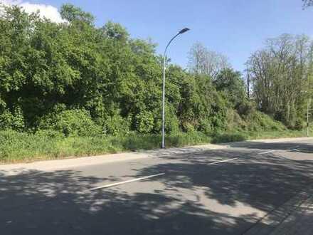 2 Hektar Gewerbegrundstück im Kreis Bergstraße
