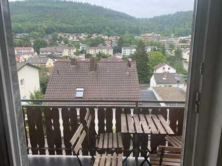 Vollmöblierte geschmackvolle Wohnung mit drei Zimmern sowie Balkon und Einbauküche in Neckargemünd