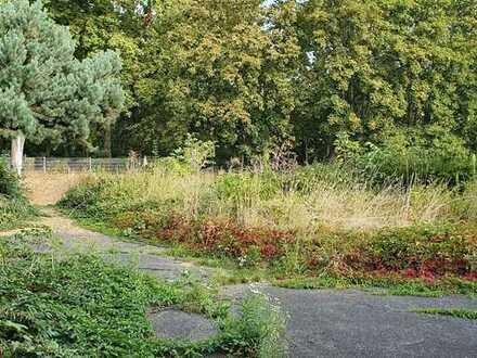 Baugrundstück in Bornheim-Hersel