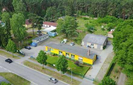 Mehrzweck Gewerbeimmobilie (Büro / Handel/ Lager) mit Werkstatt (optional) zu vermieten.