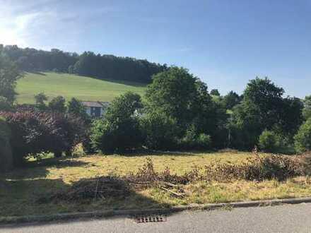 Bauplatz in Zentraler Lage in Wald-Michelbach