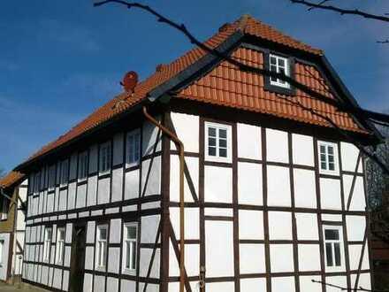 Helle kleine Wohnung in Groß Vahlberg