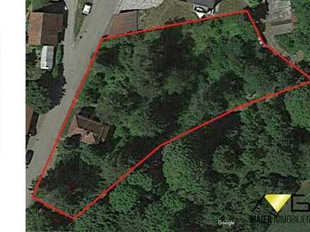 Sonniges und ruhiges Grundstück mit der Option zur Teilung in 2 Baugrundstücke