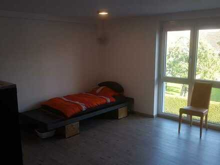 Neuwertige 1-Zimmer-Wohnung mit Einbauküche in Mötzingen