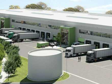 """""""BAUMÜLLER & CO."""" - ca. 30.000 m² Hallenfläche - ebenerdige Andienung + Rampen"""