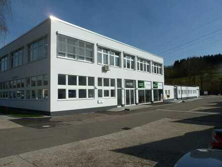 Raum Sinsheim - ca. 72 m² Büros