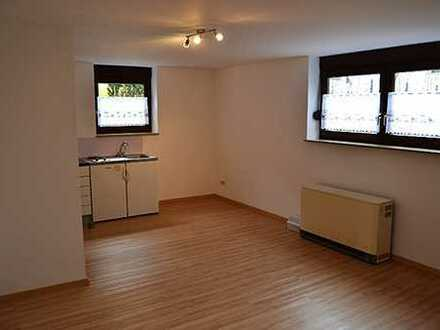 Helles 1 Zimmer Appartment im Sout. 24 qm mit Du + WC + Kü. / Neu renoviert
