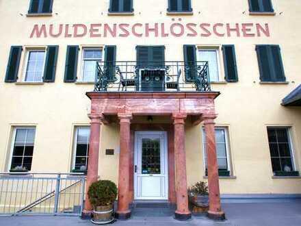 +++Muldenschlösschen sucht neuen Eigentümer+++