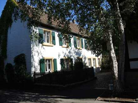 Altes Winzerhaus im historischen Ortskern von Forst a. d. Weinstraße zeitlich befristet zu vermieten