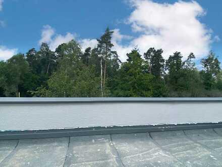 Tolles Apartment mit Dachterrasse! I 93142 Maxhütte-Haidhof