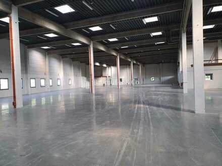 """BAUMÜLLER & CO."" moderne Hallenfläche - ca. 5.000 qm - ebenerdig/Rampe - Nahe A5"