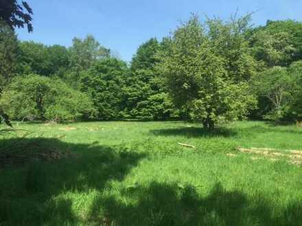 44486 m² parkartiges Grundstück mit sanierungsbedürftiger,herrschaftlicher Altbauvilla