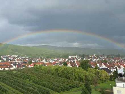 Helle und ruhige, möblierte 2-Zimmer-Wohnung mit herrlichem Blick auf die Weinberge und Weinstadt!