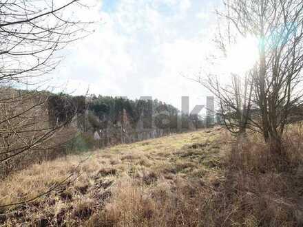 Voll erschlossen, ruhige Lage: Ca. 895 m² Baugrund in idyllischer Lage von Stamsried