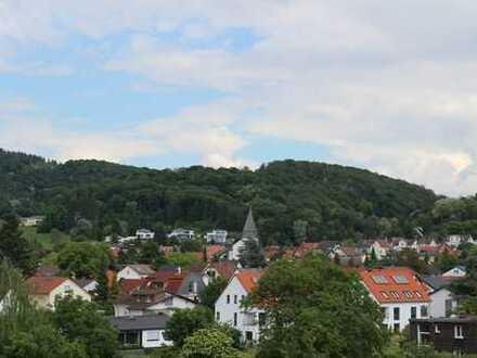 Über den Dächern von Seeheim
