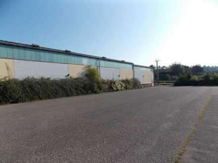 Attraktive Lagerfläche in Meckesheim - ca. 600 m²