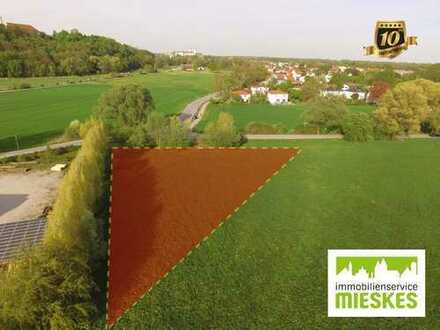 WERTHALTIG!!! Landwirtschaftliche Fläche in Freisinger Bestlage