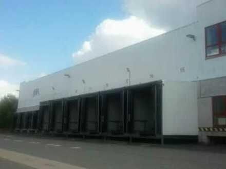 """BAUMÜLLER & CO."" - moderne Lagerhalle ca. 15.000 qm - unmittelbare BAB-Anbindung"