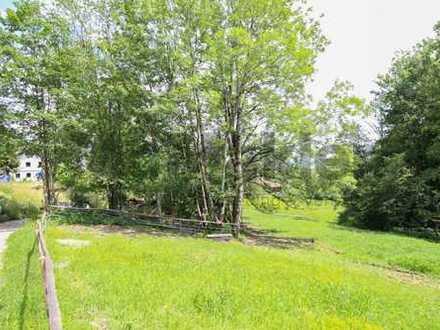 Für Landwirte: Großzügiges Grünland-Grundstück im Herzen des Allgäus nahe dem Niedersonthofener See
