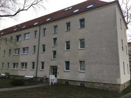 Neu renovierte Wohnung in Klotzsche!