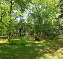 Tolles unbebautes Grundstück in Brieselang