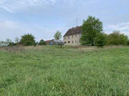 Wohnen im Biosphärenreservat Schorfheide-Chorin (Uckermark)