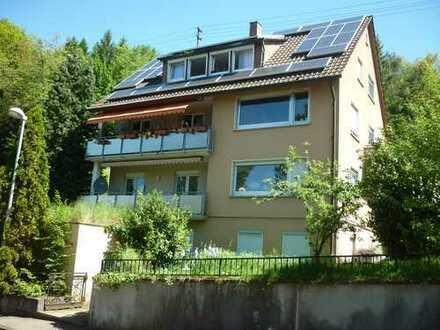 Schöne, renovierte 4-Zimmer-Dachgeschosswohnung in Esslingen (Kreis)