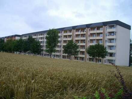 Große freundliche Wohnung in Südrandlage