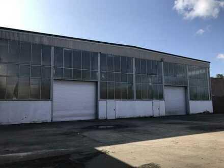 Gewerbehalle im Industriegebiet Lüneburg-Goseburg mit 4 m Deckenhöhe