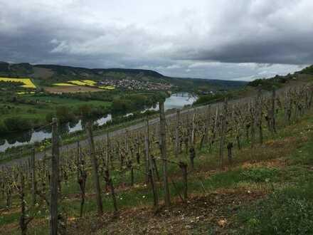 900 qm Grundstück mitten in den Weinbergen bei Würzburg