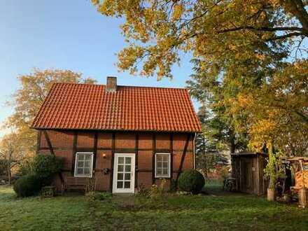 Ferienhaus bzw. Wohnhaus an der Elbe, Lüchow-Dannenberg (Kreis), Langendorf, direkt vom Eigentümer