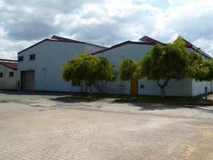 Lagerfläche Halle 14 mit 1860m² 97944 Boxberg-Schweigern zu vermieten