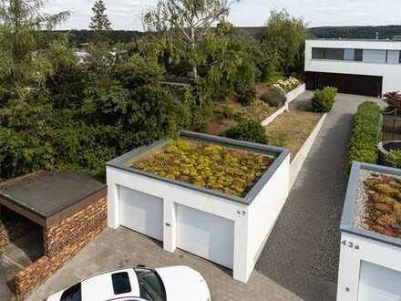 Eleganter Neubau im Bauhausstil mit Garten in exklusiver, unverbauter Südhanglage