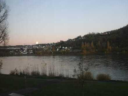 Mehrfamilienhaus direkt am Rhein