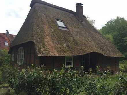 Romantisches Reetdachhaus am Waldrand in ruhiger Lage mit Garten