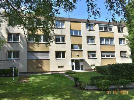wohnen in Schloßnähe - schöne 4 Zimmer-Wohnung in Stein